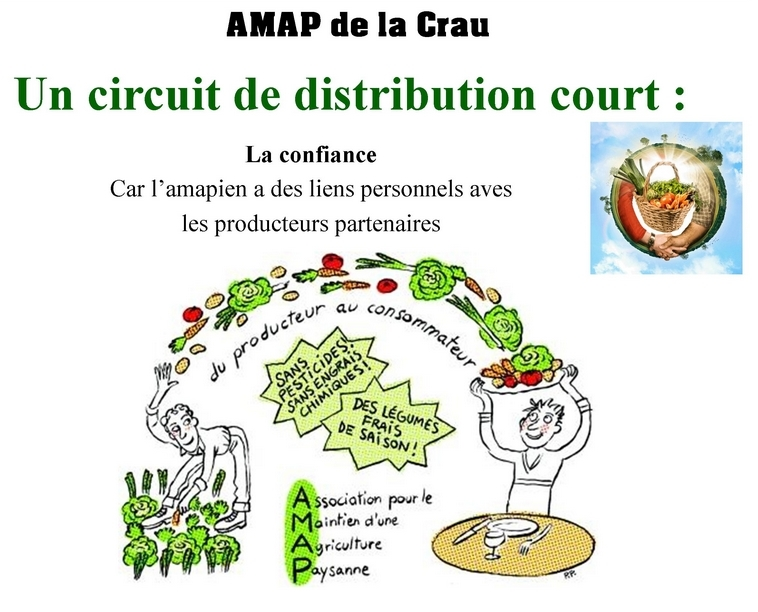 circuit_court_web