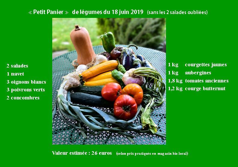 petit_panier_legumes_18juin2019_web